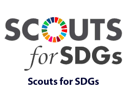 Scouts for SDGs